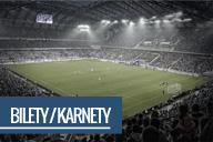 Bilety na mecze Lecha Pozna�